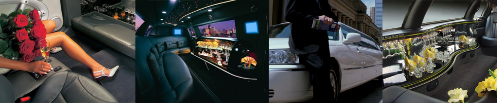 top-header-limo